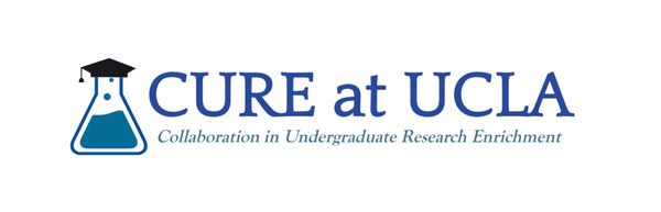 Collaboration in Undergraduate Research Enrichment at UCLA Logo