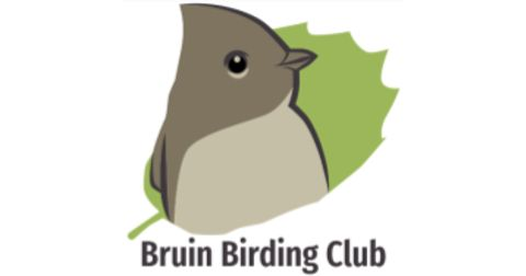 Bruin Audubon Society and Birding Club Logo