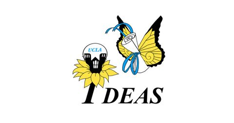 Improving Dreams, Equality, Access and Success (IDEAS) Logo